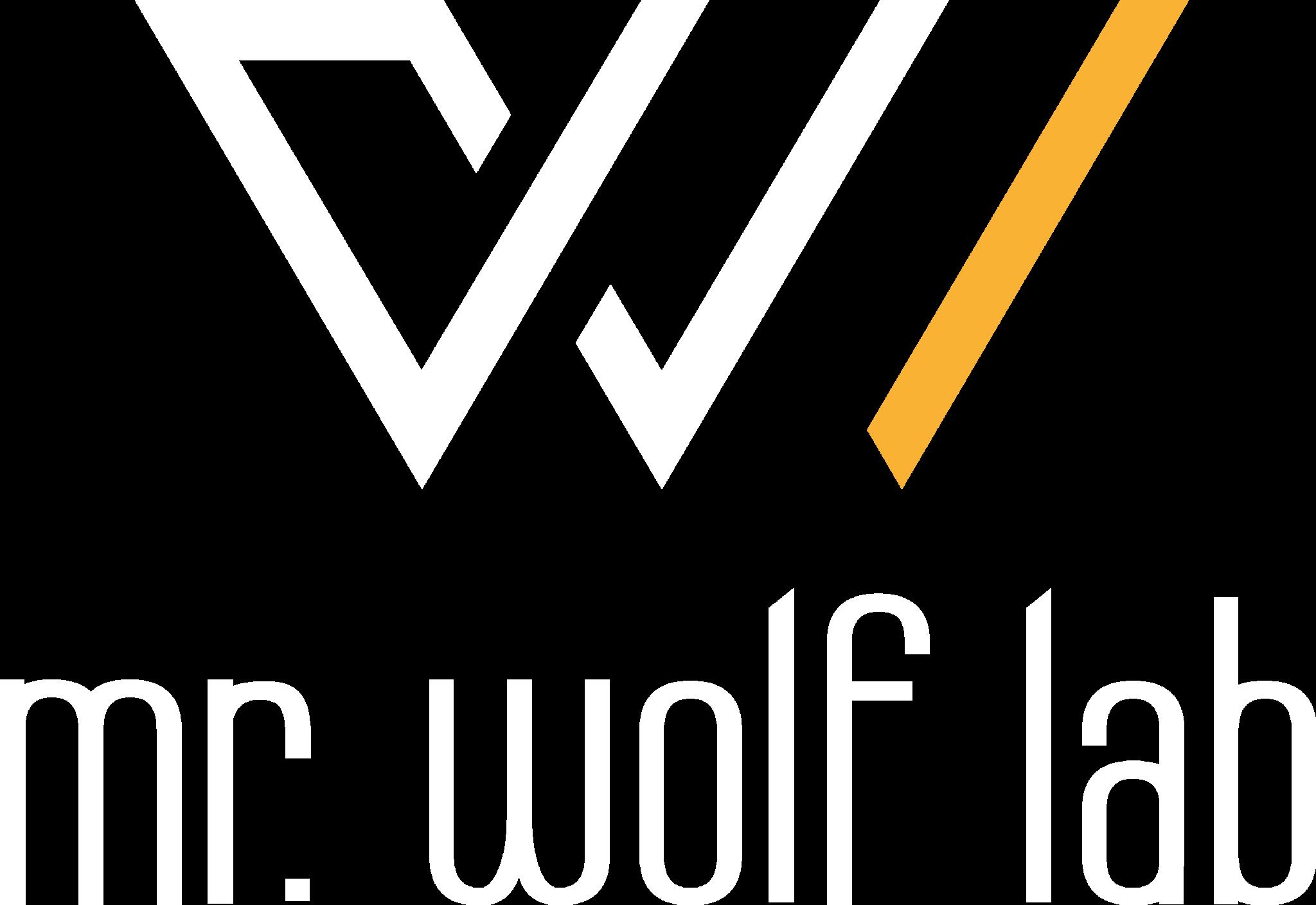 studio grafico mr wolf lab fonte nuova